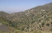 P013, Rural Plot in Sedella