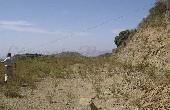 P015, Terrain Agricole en Sedella