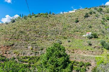 Rural Plot in Cómpeta