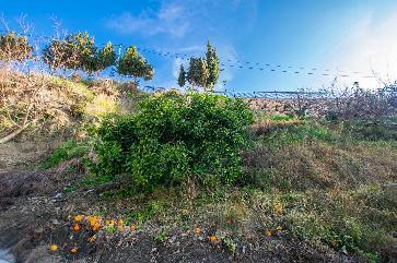 Perceel in dorp/stad in Canillas De Albaida